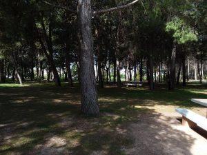 Parque de San Macario Andorra 7